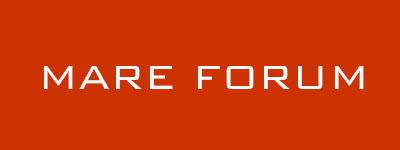 Mare Forum Ship Finance